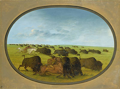 Painting - Buffalo Chase With Accidents by George Catlin