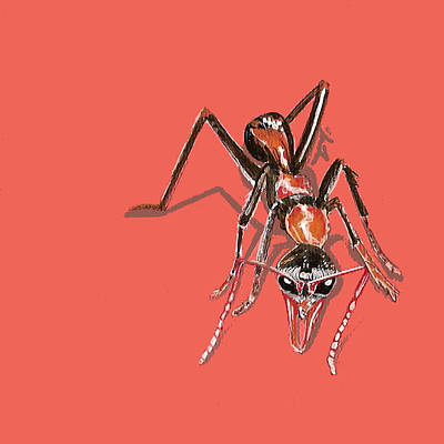 Ants Painting - Bull Ant by Jude Labuszewski