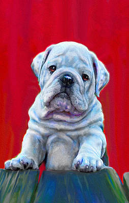 Bulldog Puppy On Red Print by Jane Schnetlage