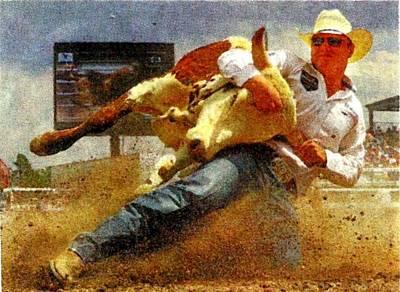 Steer Painting - Bulldogg'n by Joseph Barani