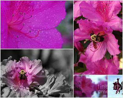 Bumblebee Bonanza Print by Priscilla Richardson