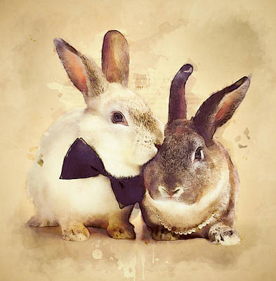 Rabbit Mixed Media - Bunnies Are In Love by BONB Creative