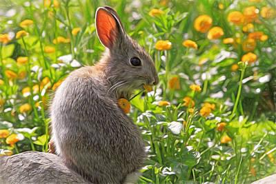 Rabbit Photograph - Bunny Brunch by Donna Kennedy