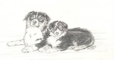 Burmese Python Drawing - Burmese Mountain Dogs by Caryn Sterling
