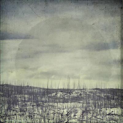 Wildfire Photograph - Burned Ground by Priska Wettstein