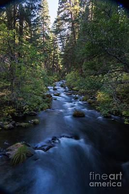 burney Creek #2 Print by Dan Hartford
