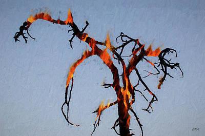 Chroma Digital Art - Burning Tree by David Gordon
