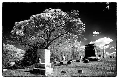 Bury Me Under A Tree Print by John Rizzuto