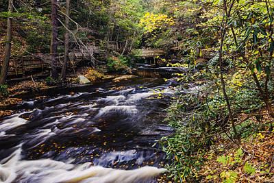 Bushkill Falls State Park Autumn Pennsylvania Usa Print by Vishwanath Bhat