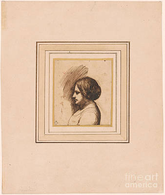 Giovanni Francesco Barbieri Painting - Bust Length Portrait Of A Woman In Profile by MotionAge Designs