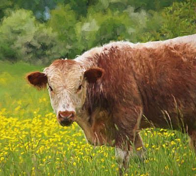 Buttercup - Brown Cow Print by Gill Billington