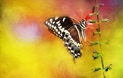 Fauna Painting - Butterflies Are Self Propelled Flowers by Ches Black