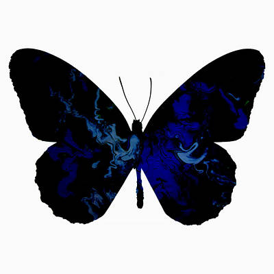 Butterfly 002 Print by Brian Reaves