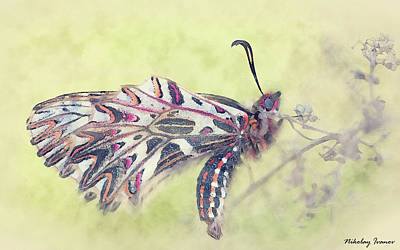 Flower Painting - Butterfly-amazing Paintings-27 by Nikolay Ivanov