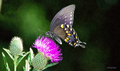 Jeff Digital Art - Butterfly And Thistle by Jeff Kolker