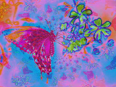 Butterfly Dreams Print by Rose  Hill