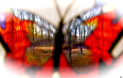 Natures Wonderful Colors Digital Art - Butterfly Forest Q by Debra     Vatalaro