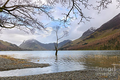 Buttermere Winter Print by Richard Thomas