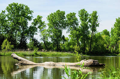 Landscape Photograph - By The Lake by Adam Northup