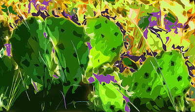 Abstract Photograph - Cactus Abstract by Norman Johnson