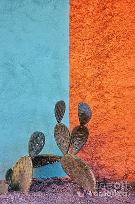 Cactus And Colorful Wall Print by Matt Suess