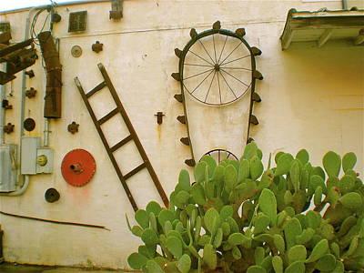 Ladder Photograph - Cactus by Sheep McTavish