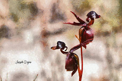 Found Painting - Caleana Major Flower by Leonardo Digenio