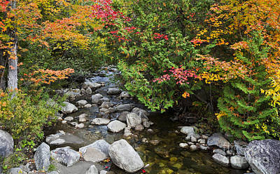 Sutton Photograph - Calendar Brook Autumn by Alan L Graham