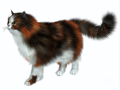 Calico Cat Print by Corey Ford
