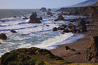 Marine Photograph - California Coast Sonoma by Garry Gay