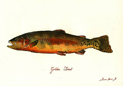 Brook Trout Painting - California Golden Trout Fish by Juan  Bosco