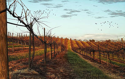 California Vineyard In Winter Print by Glenn McCarthy Art and Photography