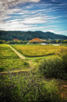 Dry Creek Photograph - California Wine County - Sonoma #3 by Jennifer Rondinelli Reilly