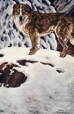 Novel Painting - Call Of The Wild, 1903 by Granger