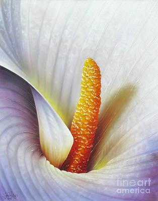 Calla Lily Print by Jurek Zamoyski