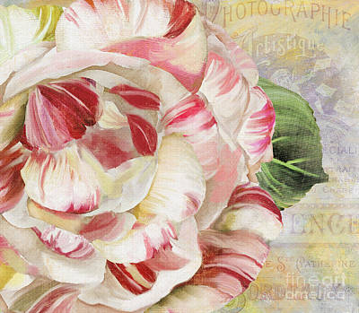Camellia Print by Mindy Sommers