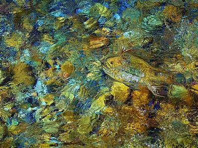 Imaginitive Digital Art - Camouflagec by Marilyn Bashore