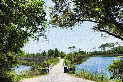 Camp Helen State Park Walkway To The Gulf Of Mexico Print by Vizual Studio