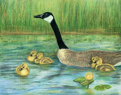 Canada Goose And Goslings Print by Jeanne Kay Juhos