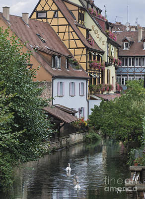 Vineyards Of Alsace Photograph - Canals Of Colmar by Yefim Bam