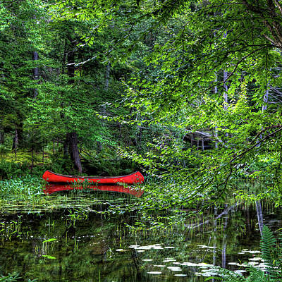 Canoe On The Shore Print by David Patterson