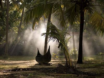 Photograph - Canoe Under Palm Trees In Kerala, India by Keith Levit