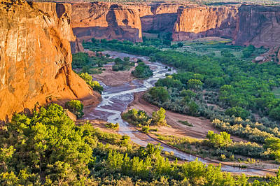 Tree Photograph - Tsegi Sunrise - Canyon De Chelly National Monument Photograph by Duane Miller