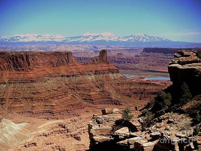 Canyonlands 5 Print by Marty Koch