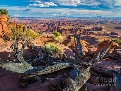Striations Photograph - Canyonlands White Rim by Inge Johnsson