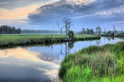 Cypress Swamp Photograph - Cape Fear Morning by JC Findley