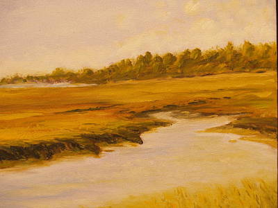 Cape Marsh Print by Paul Galante