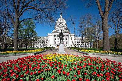 Capitol Tulips Print by Todd Klassy