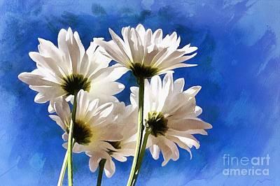 White Daisy Photograph - Carefree Memories by Krissy Katsimbras