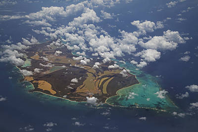 Recent Photograph - Caribbean High by Betsy Knapp